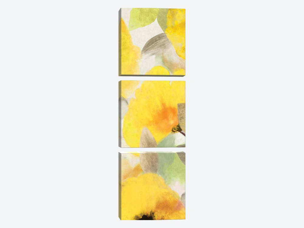 Happy Florals II by Aimee Wilson 3-piece Canvas Artwork