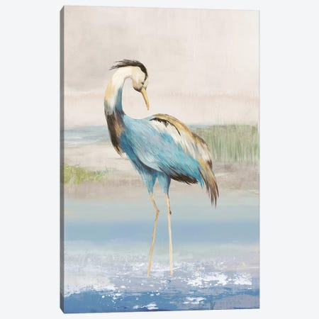 Heron On The Beach I Canvas Print #AWI140} by Aimee Wilson Canvas Art Print