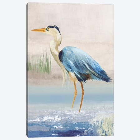 Heron On The Beach II Canvas Print #AWI141} by Aimee Wilson Art Print