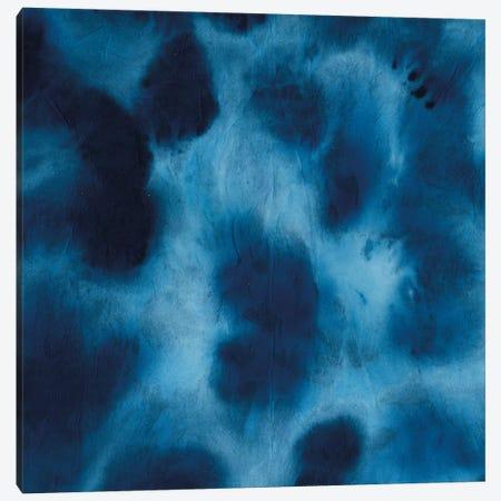 Indigo Dye VII Canvas Print #AWI164} by Aimee Wilson Canvas Wall Art