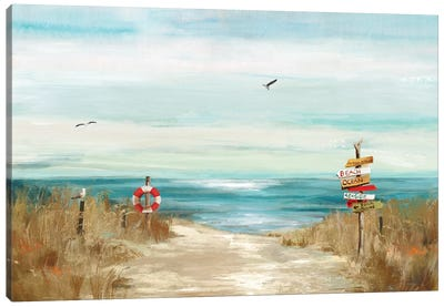 Beach Bird Canvas Art Print
