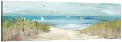 Beachlong Birds Canvas Art Print
