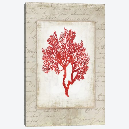 Red Coral III Canvas Print #AWI237} by Aimee Wilson Canvas Art
