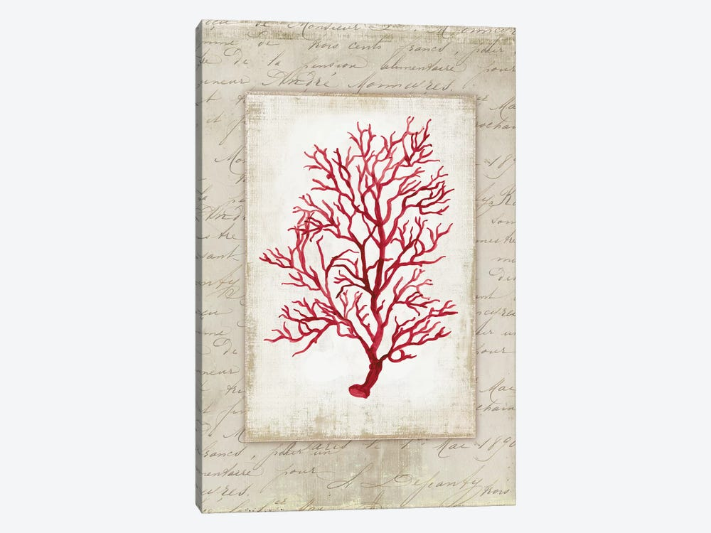 Red Coral V by Aimee Wilson 1-piece Canvas Art