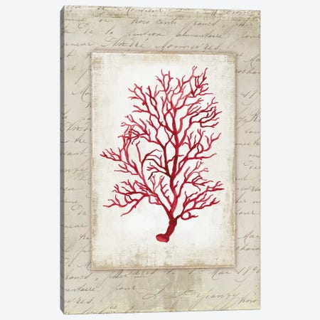 Red Coral V Canvas Print #AWI239} by Aimee Wilson Canvas Art Print