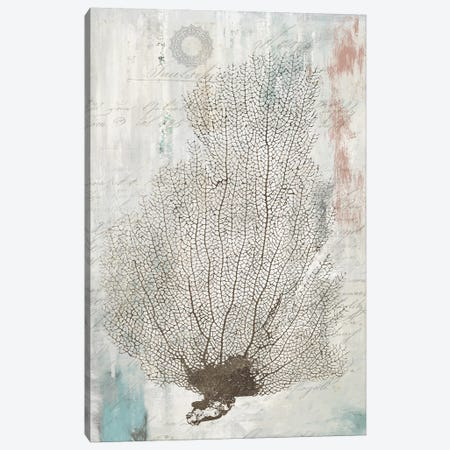 Shabby Chic I Canvas Print #AWI252} by Aimee Wilson Art Print