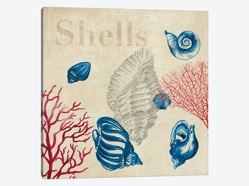 Shell Study by Aimee Wilson 1-piece Art Print