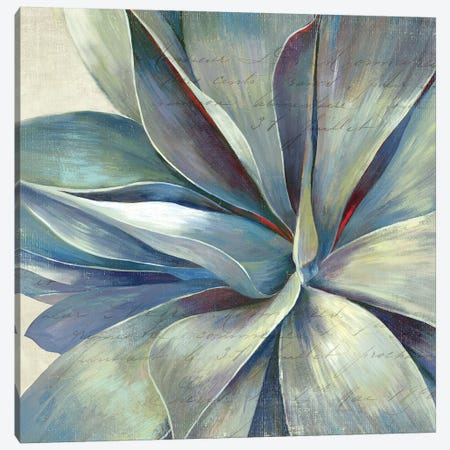 Succulence II Canvas Print #AWI275} by Aimee Wilson Canvas Artwork