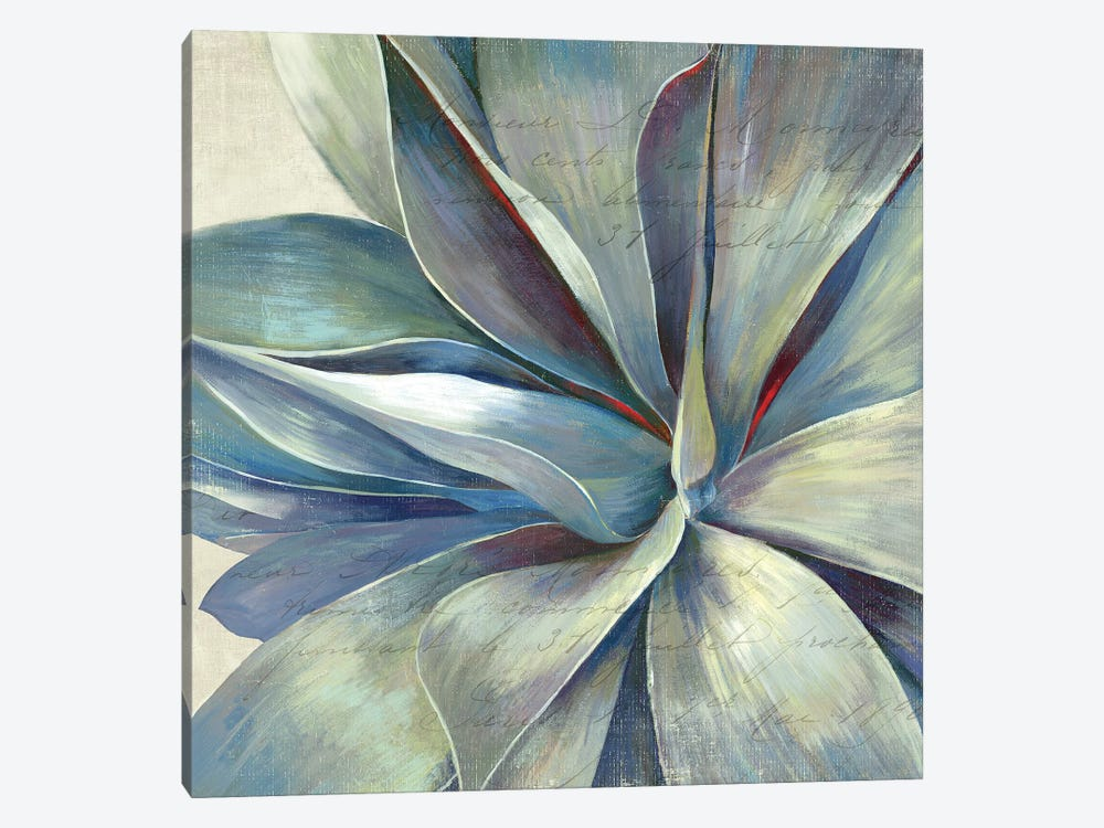 Succulence II 1-piece Canvas Art