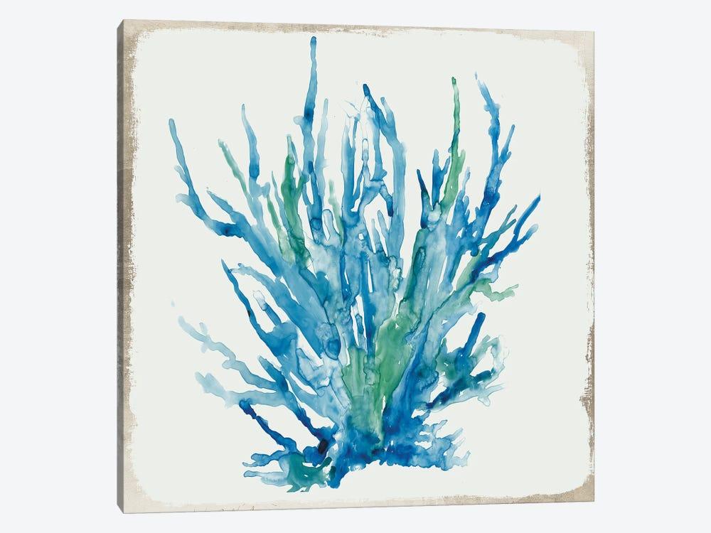 Blue Coral IV  by Aimee Wilson 1-piece Canvas Art