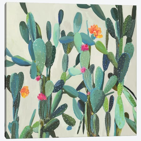 Cactus Garden Canvas Print #AWI349} by Aimee Wilson Canvas Print