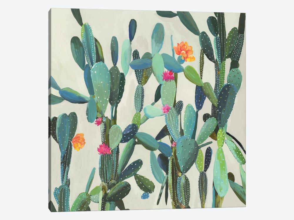 Cactus Garden by Aimee Wilson 1-piece Canvas Wall Art