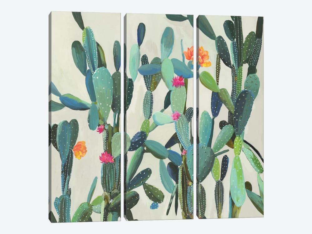 Cactus Garden by Aimee Wilson 3-piece Canvas Artwork