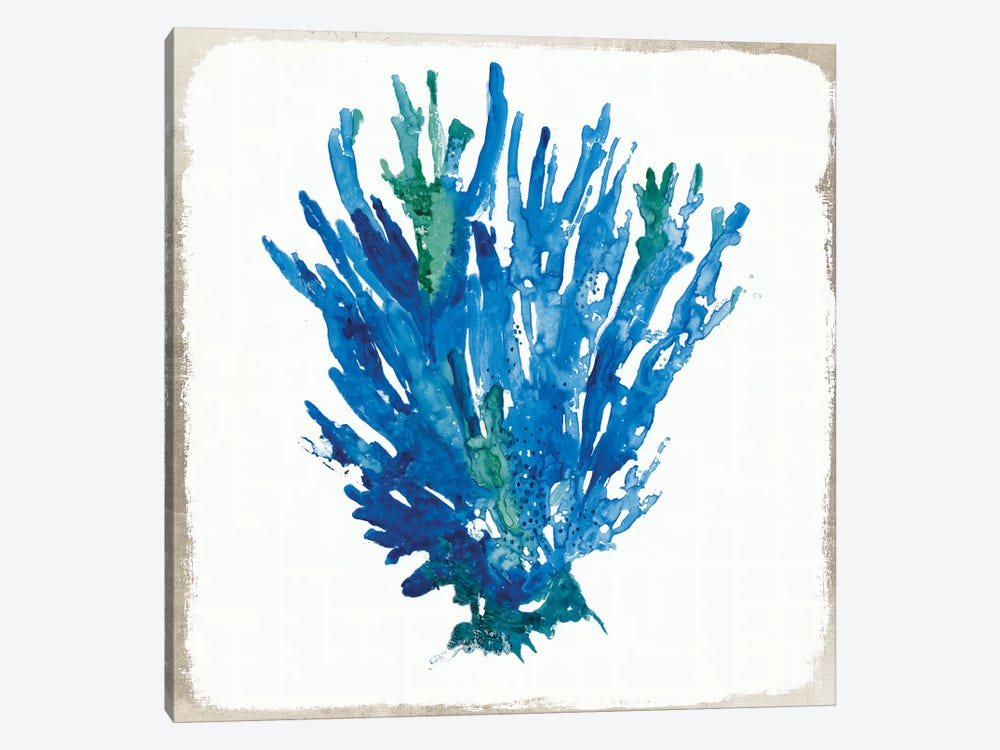 Blue Coral V by Aimee Wilson 1-piece Art Print