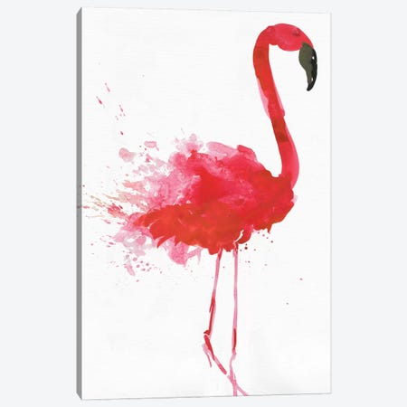 Flamingo Portrait II Canvas Print #AWI357} by Aimee Wilson Canvas Print