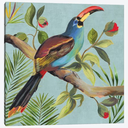 Paradise Toucan I Canvas Print #AWI363} by Aimee Wilson Canvas Art Print