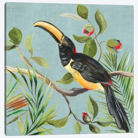 Paradise Toucan II Canvas Print #AWI364} by Aimee Wilson Canvas Artwork