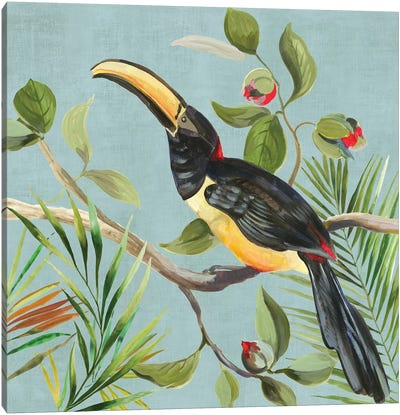 Paradise Toucan II Canvas Art Print