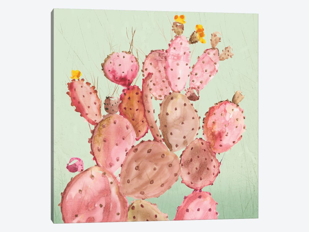 Pink Cacti by Aimee Wilson 1-piece Canvas Art