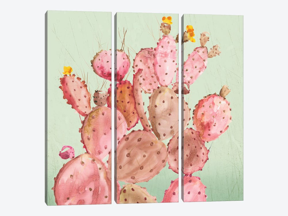 Pink Cacti by Aimee Wilson 3-piece Canvas Art