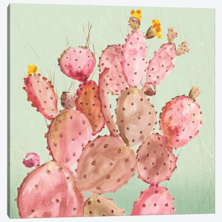 Pink Cacti Canvas Print #AWI365} by Aimee Wilson Canvas Artwork