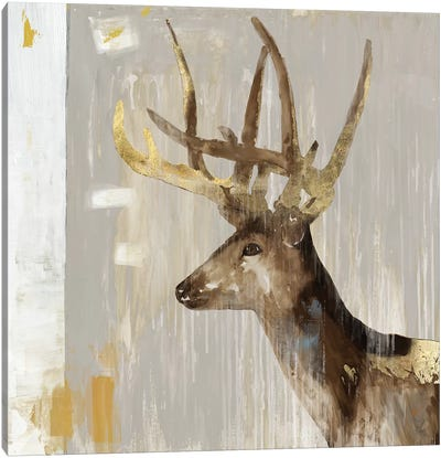 Stag I Canvas Art Print