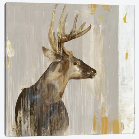Stag II Canvas Print #AWI370} by Aimee Wilson Canvas Artwork