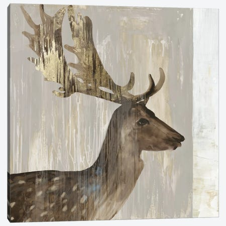Stag III Canvas Print #AWI371} by Aimee Wilson Canvas Art