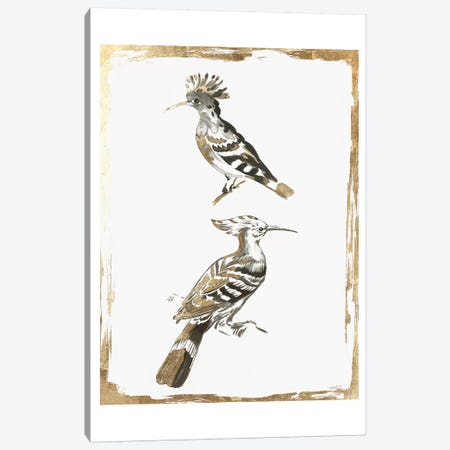 Perched Birds  Canvas Print #AWI382} by Aimee Wilson Canvas Art Print