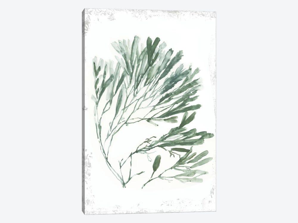 Emerald Coral II  by Aimee Wilson 1-piece Art Print