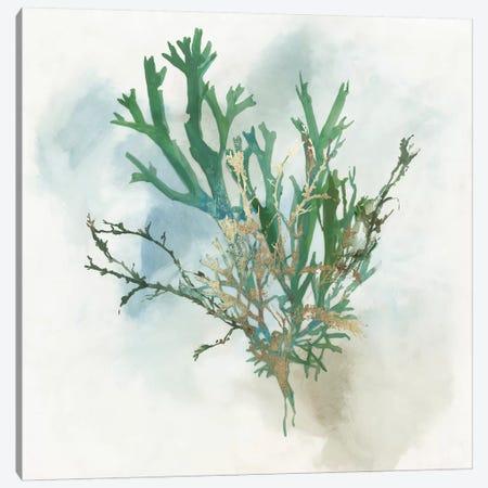Green Coral I  Canvas Print #AWI390} by Aimee Wilson Canvas Artwork