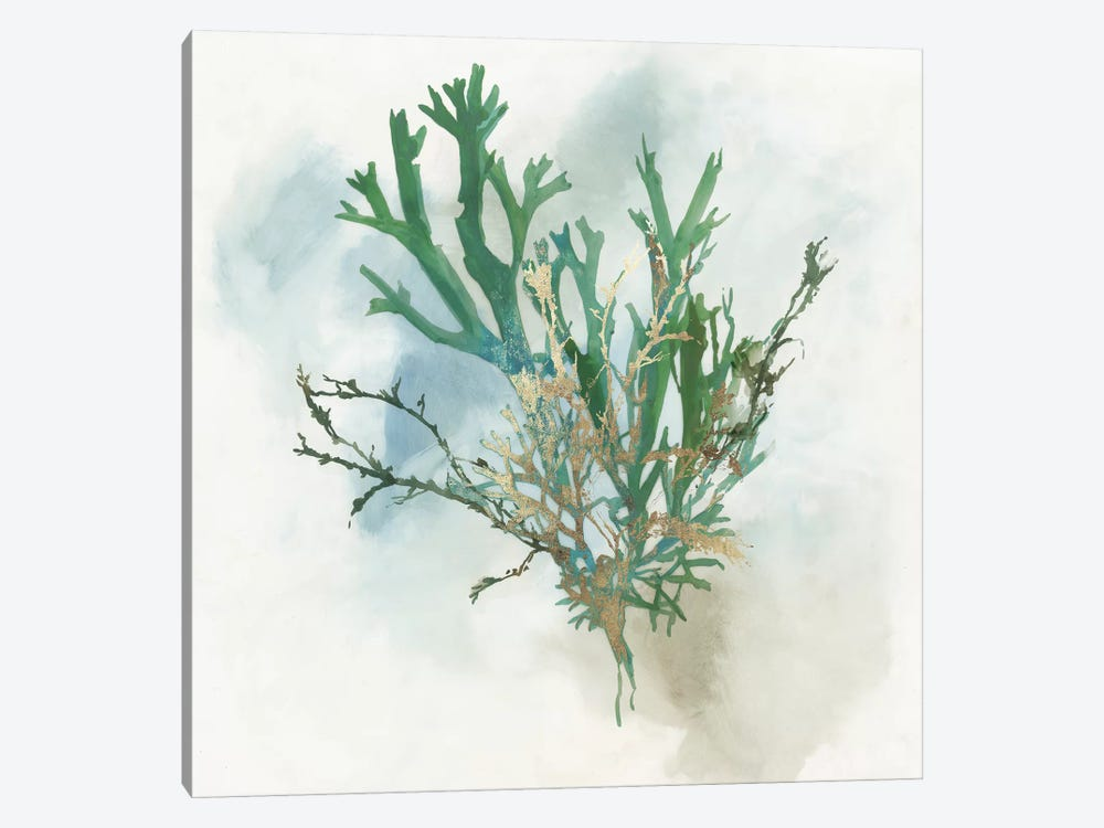 Green Coral I  by Aimee Wilson 1-piece Canvas Wall Art