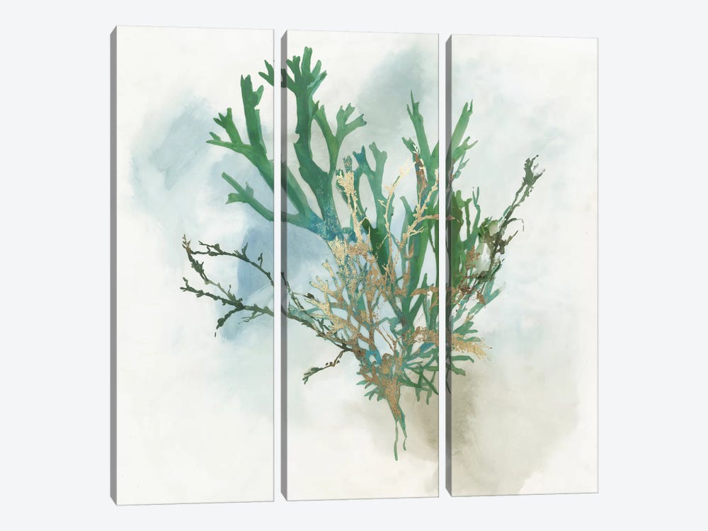 Green Coral I  by Aimee Wilson 3-piece Canvas Artwork
