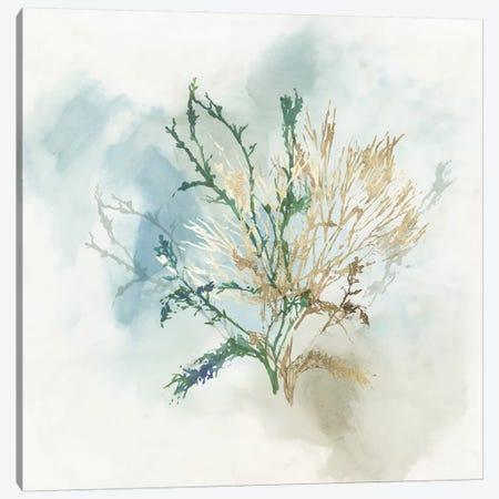 Green Coral II  Canvas Print #AWI391} by Aimee Wilson Canvas Art