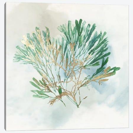 Green Coral III  Canvas Print #AWI392} by Aimee Wilson Canvas Art