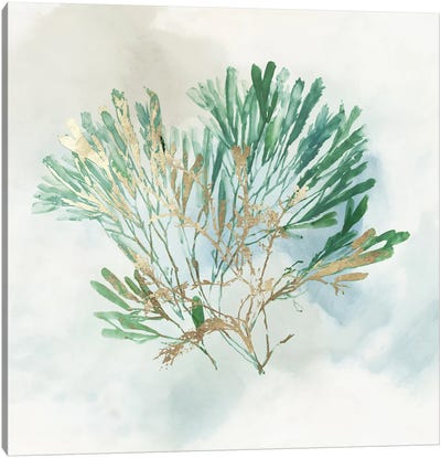 Green Coral III  Canvas Art Print
