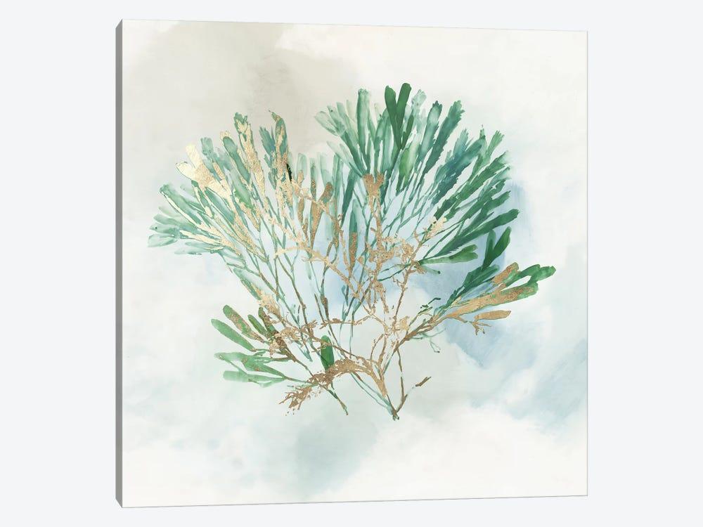 Green Coral III  by Aimee Wilson 1-piece Canvas Wall Art