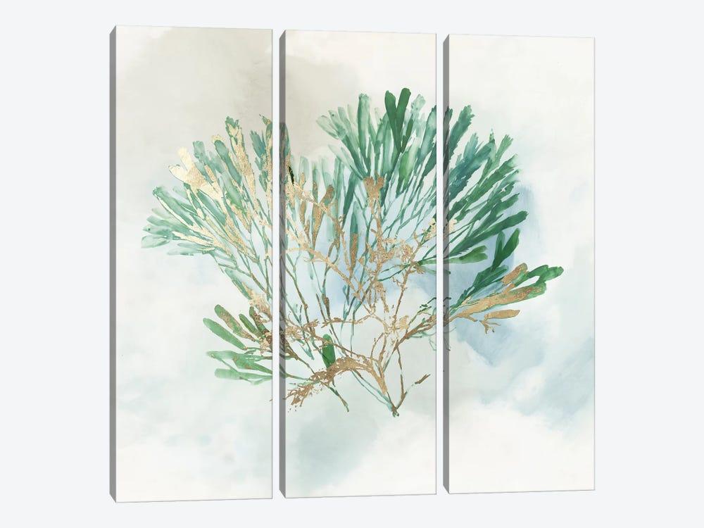 Green Coral III  by Aimee Wilson 3-piece Canvas Art