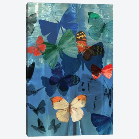 Fluttering Butterflies  Canvas Print #AWI410} by Aimee Wilson Canvas Art Print