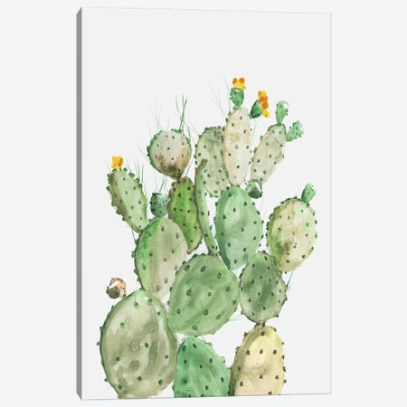 Sunny Cactus  Canvas Print #AWI431} by Aimee Wilson Canvas Print