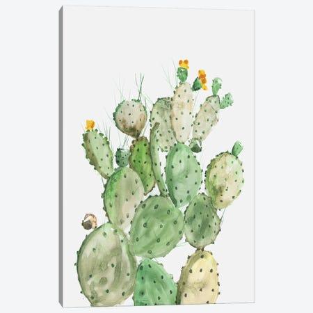 Sunny Cactus  Canvas Print #AWI431} by Aimee Wilson Canvas Print