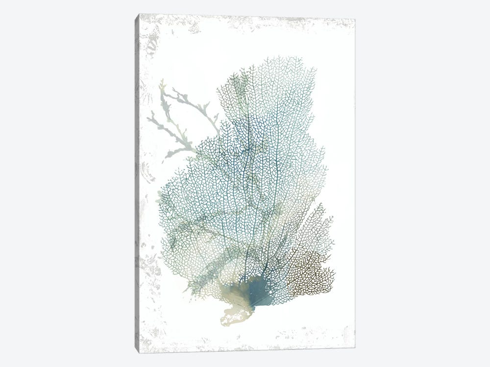 Teal Delicate Coral II  by Aimee Wilson 1-piece Canvas Art
