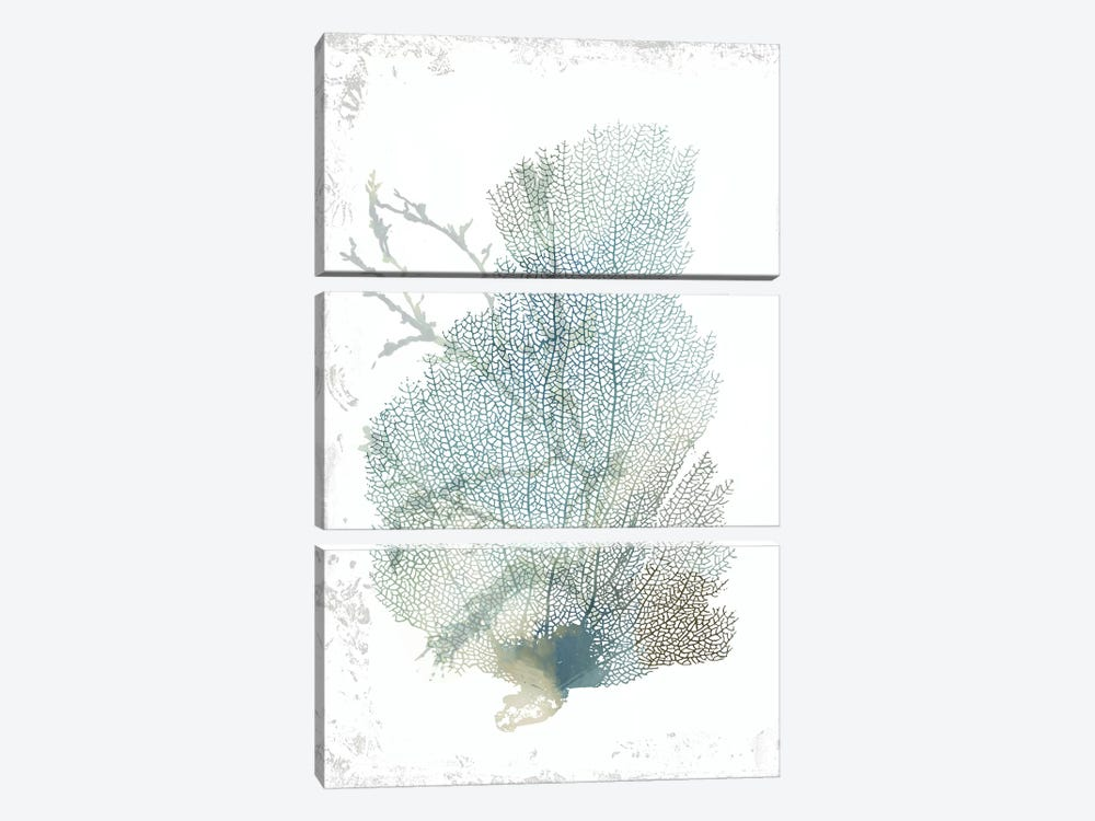 Teal Delicate Coral II  by Aimee Wilson 3-piece Canvas Wall Art