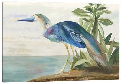Season of Pease I Canvas Art Print