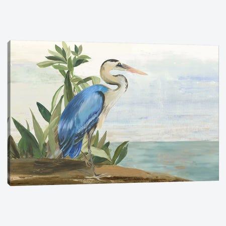 Season of Pease II Canvas Print #AWI451} by Aimee Wilson Art Print