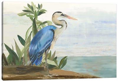 Season of Pease II Canvas Art Print