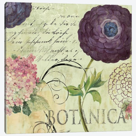 Botanica Canvas Print #AWI46} by Aimee Wilson Canvas Art Print
