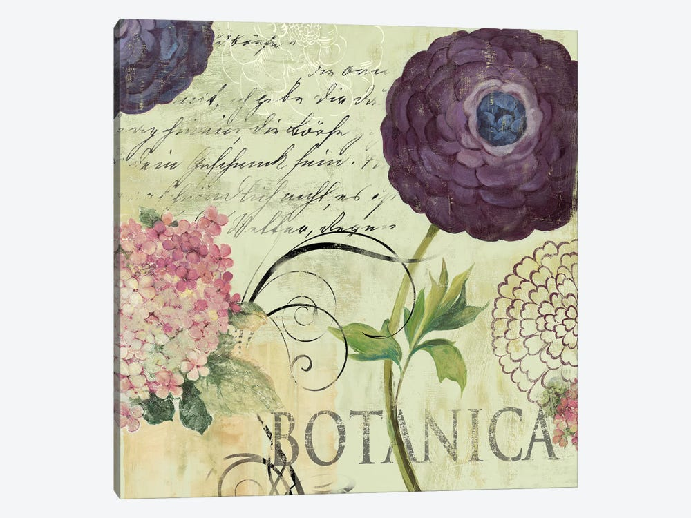 Botanica by Aimee Wilson 1-piece Canvas Art