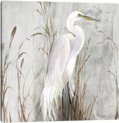 Heron in the Reeds Canvas Art Print