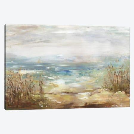 Parting Shores Canvas Print #AWI472} by Aimee Wilson Canvas Art Print
